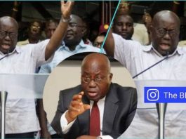 Our Own People Keep Lying To Akufo-Addo And Ghanaians Aren't Happy – NPP's Kwesi Botchwey